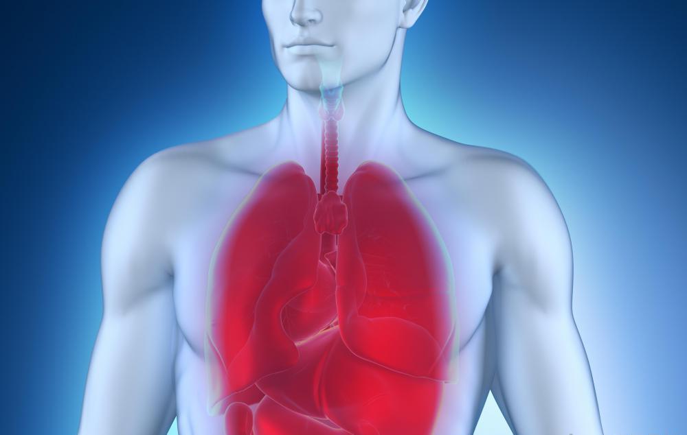 Как передается пневмония от человека к человеку, заразно ли воспаление легких, симптомы заболевания