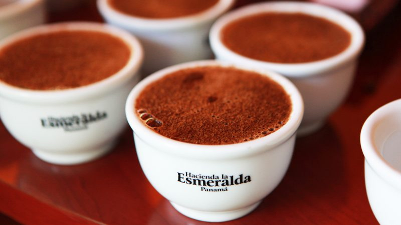 Самый дорогой кофе в мире: где и как производятся элитные сорта, сколько стоит самая дорогая чашка кофе