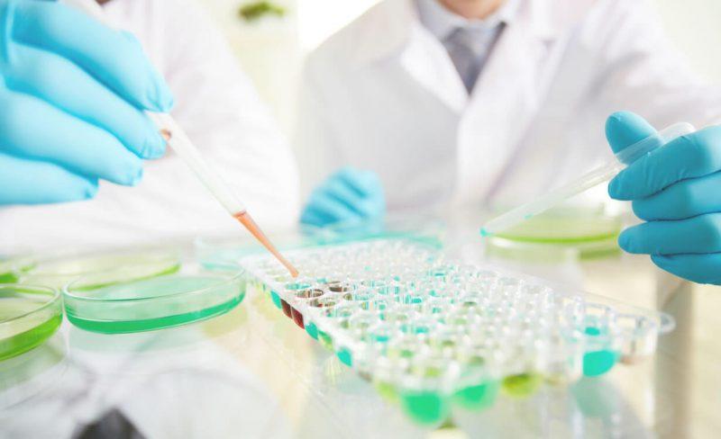 Болезнь «кленового сиропа»: что это такое, симптомы, диагностика, лечение наследственной ферментопатии