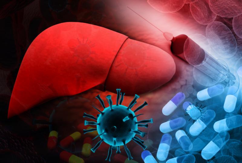 Вирусный гепатит: виды, симптомы, пути передачи, профилактика и лечение