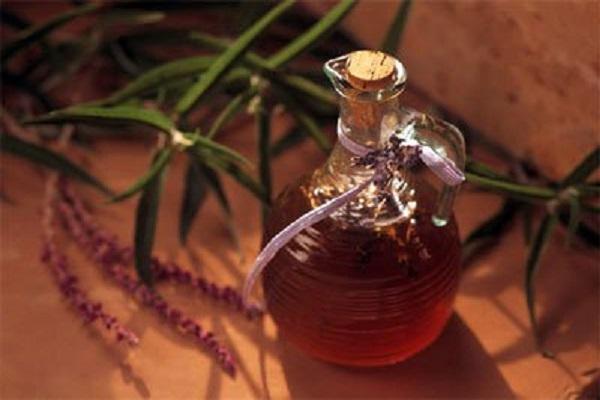 Настойка из пчелиного подмора: лечебные свойства, способы приготовления, применение