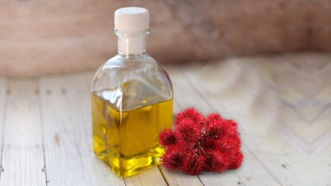 Касторовое масло для волос – 8 способов как применять