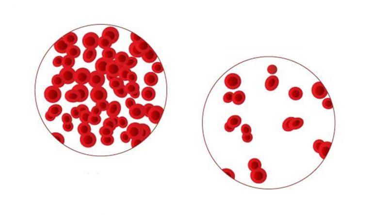 Ферро-фольгамма: инструкция по применению, состав, аналоги поливитаминного комплекса с железом