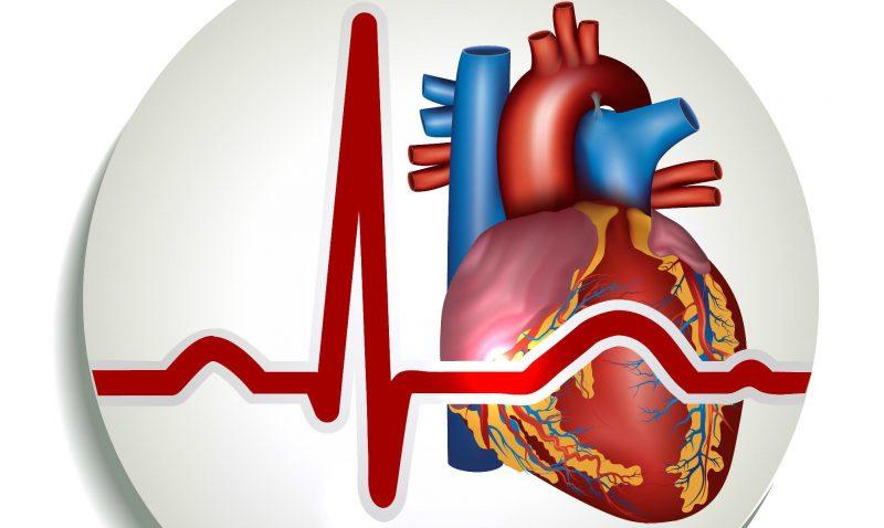 Синусовая аритмия сердца: что это такое, причины, симптомы, диагностика, лечение