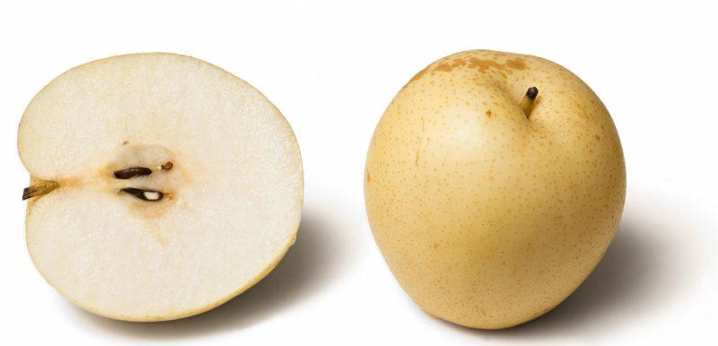 Китайская груша: польза и вред для организма, противопоказания