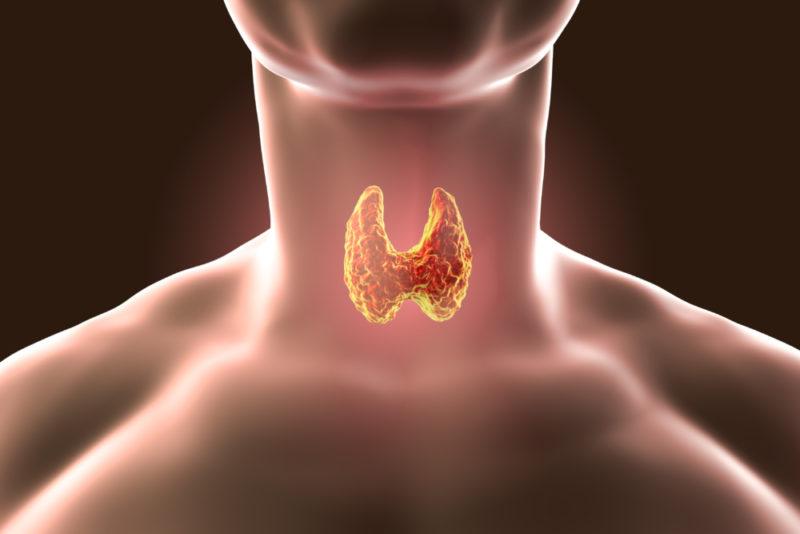 Сцинтиграфия щитовидной железы: что это за исследование, как проводится, показания и противопоказания, подготовка к обследованию