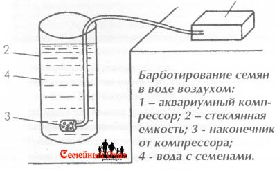 Схема установки для барботирования семян