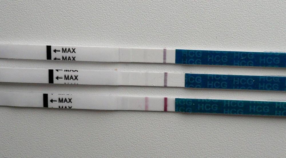 Эвитест: виды, инструкция по применению домашних тестов на беременность и овуляцию