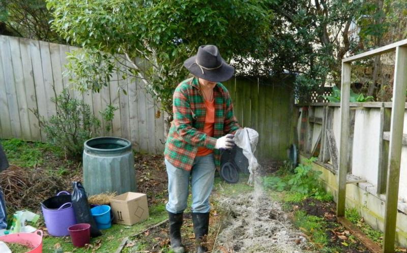 Зола как удобрение: как применять для подкормки садовых и комнатных растений, полезные свойства