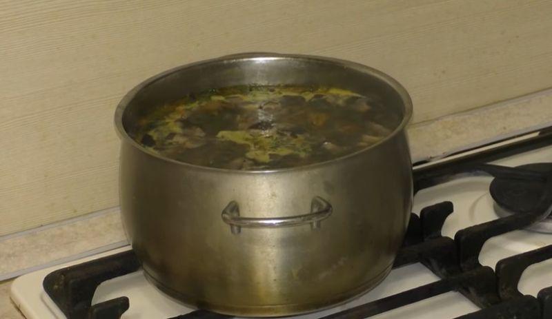 Грибной суп из свежих грибов, самые вкусные рецепты